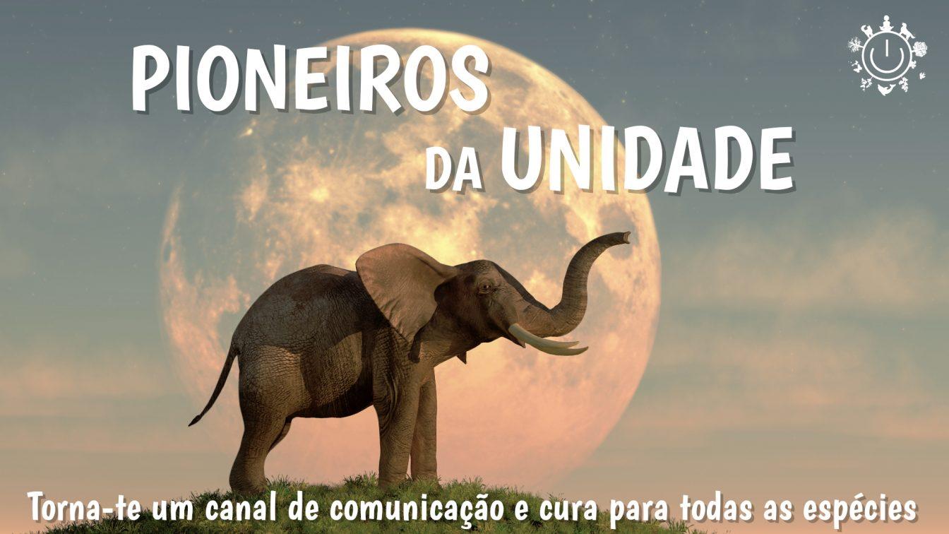 cartaz_pioneiros_oui (final)